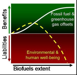Conceptual model illustrating the likely scaling of the net benefits and net liabilities of biofuels. Adapted from Ojima et al. 2009.
