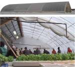 Solar heated greenhouse in Manitoba